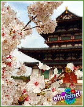 Язык цветов. Символическое значение цветов в японском саду